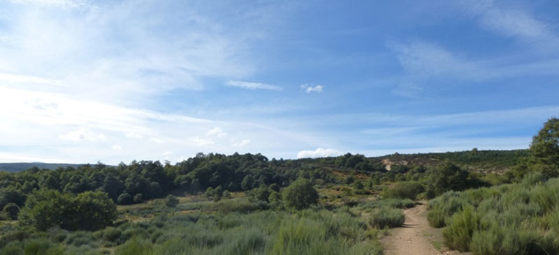 landschaft-5